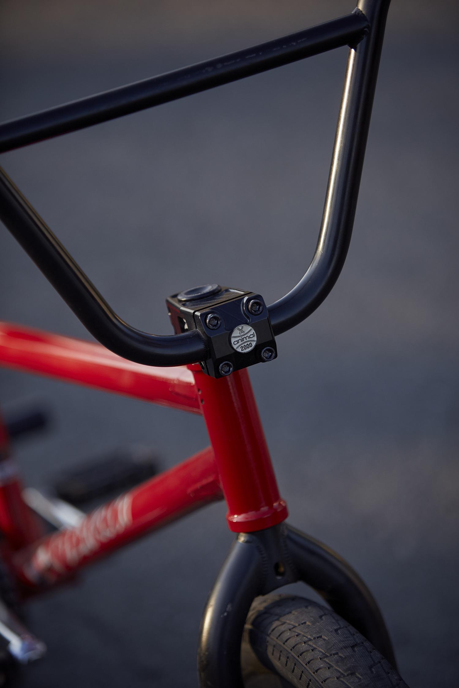 Adrien bike check 9websize.jpg