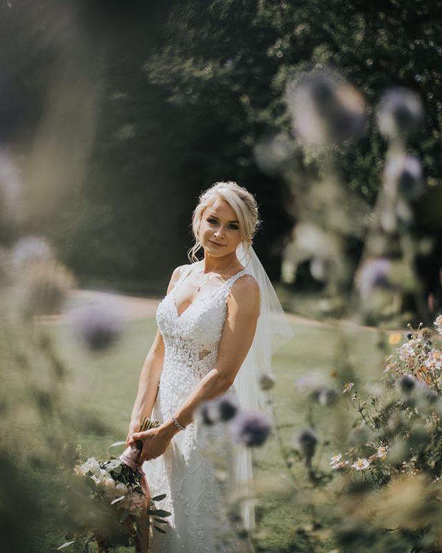 Hanging on to summer sunshine  #happysaturday #sunshine #loveoutdoors #drgphotography #nottinghamphotography #nottinghamphotographer #bohoweddings #details #nottingham #elopement #elopementinspiration #thatsdarling #bridetobe #exploretocreate #ukweddingphotographer #destinationweddingphotographer #intimatewedding #loveandwildhearts #photobugcommunity #whimsical #whimsicalwedding #rockmywedding #thistles #woodlandwedding
