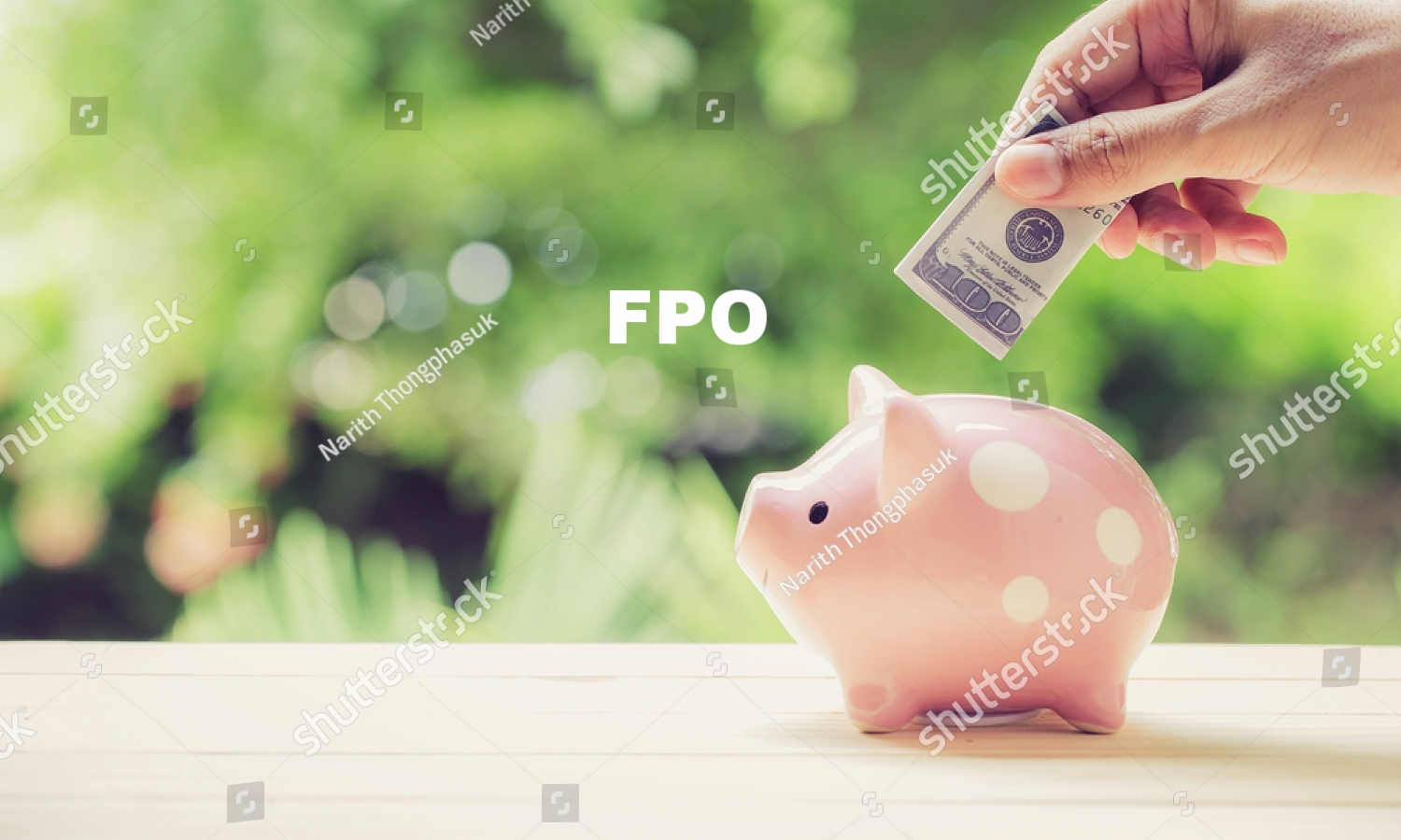 stock-photo-male-hand-saving-money-in-a-piggybank-on-nature-background-662990587 2.jpg
