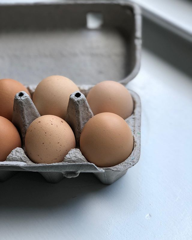 Hello little speckled egg!