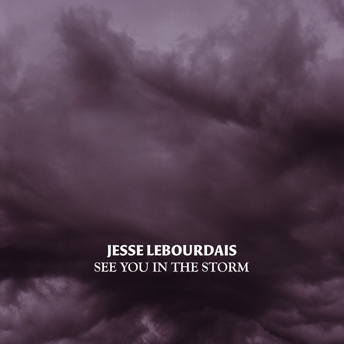 SEE YOU IN THE STORM - OUT NOW!!