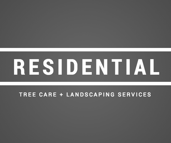 Tree Care, Landscaping in Cold Spring, Beacon, Garrison, and Cortlandt Manor, NY