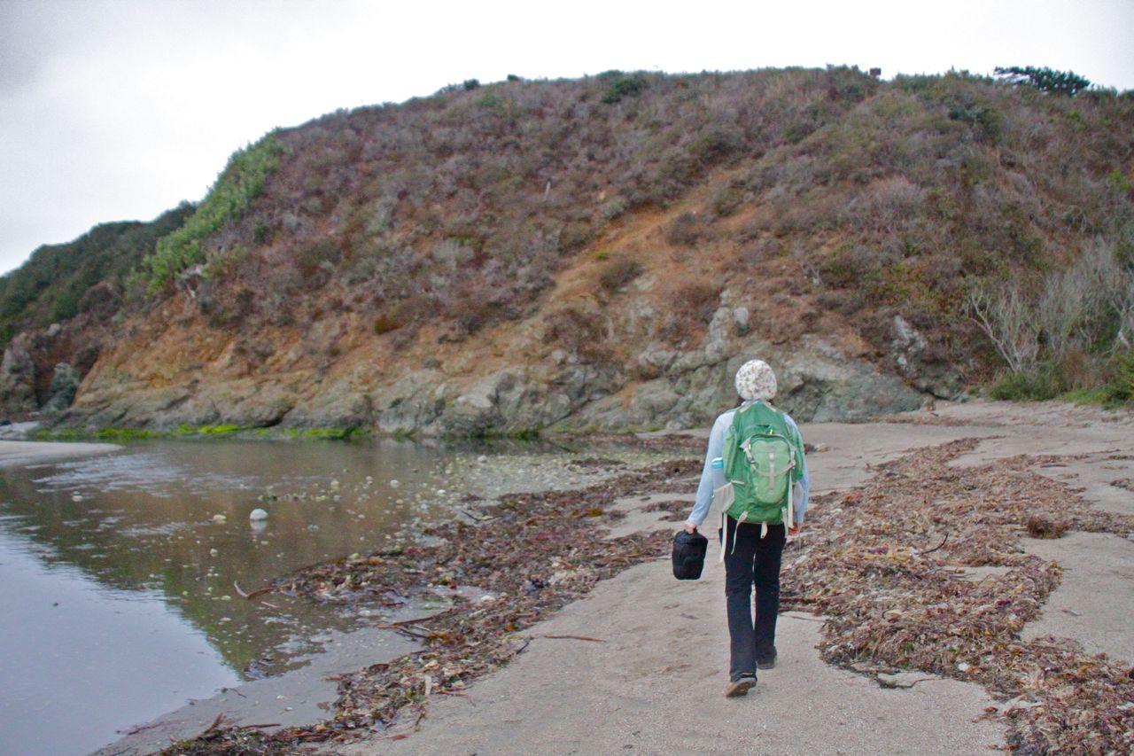 Shore walk at Andrew Molera