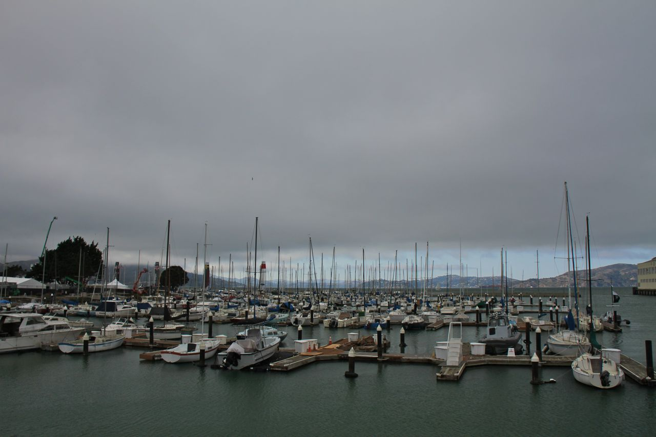 Foggy marina