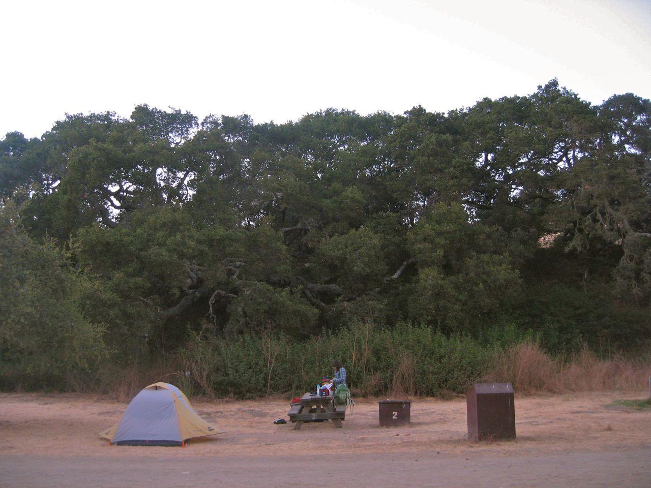 Our campsite at Andrew Molera