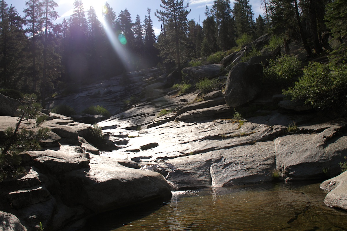 Sequoia - Dorst Creek