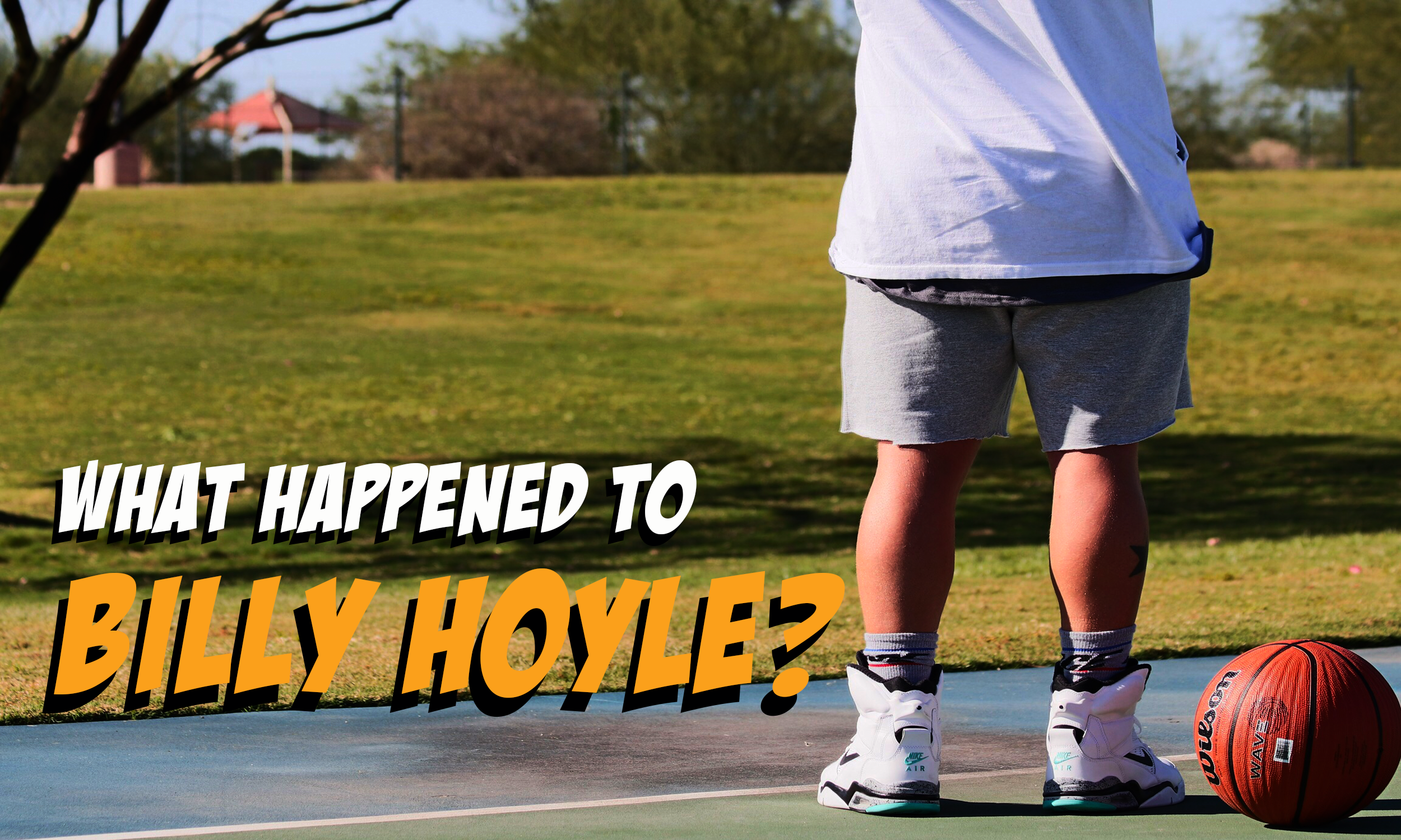hoyle blog cover.png