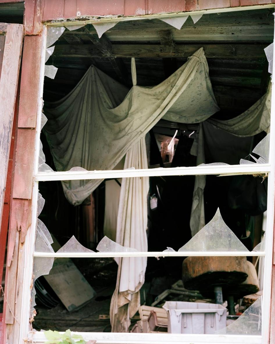 "Alexandra Vanderhider    Succession,  Epson Photographic Print, 20"" x 25"""
