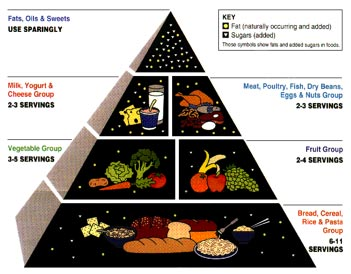 The American Food Guide Pyramid released by the United States Department of Agriculture.