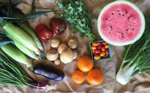 September 2016 Sample Vegetable Share