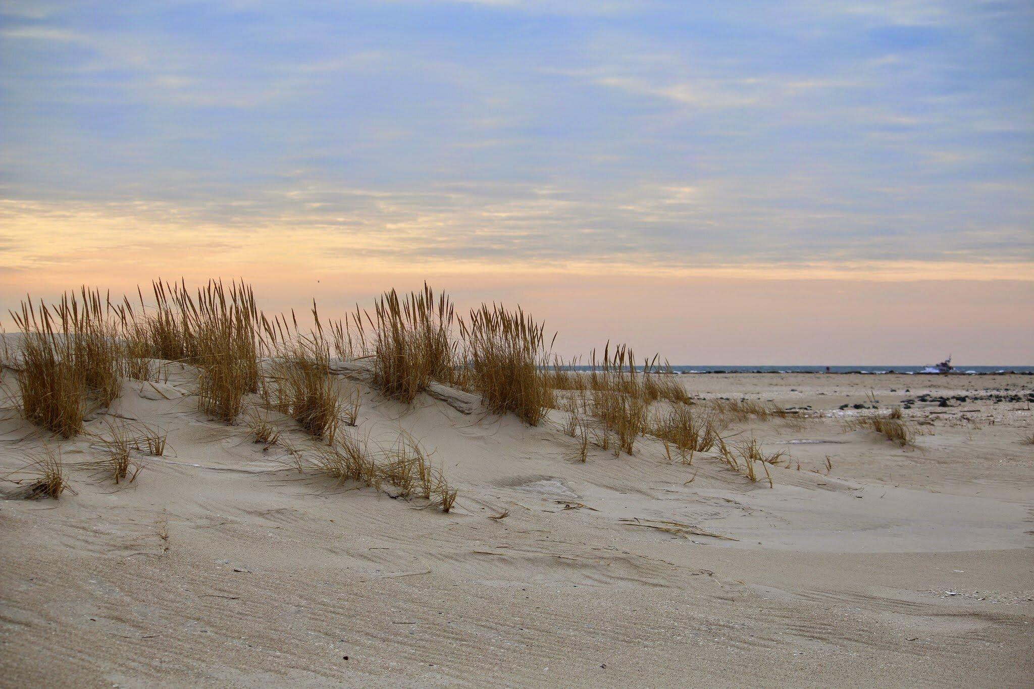 jones beach dunes and inlet.jpg