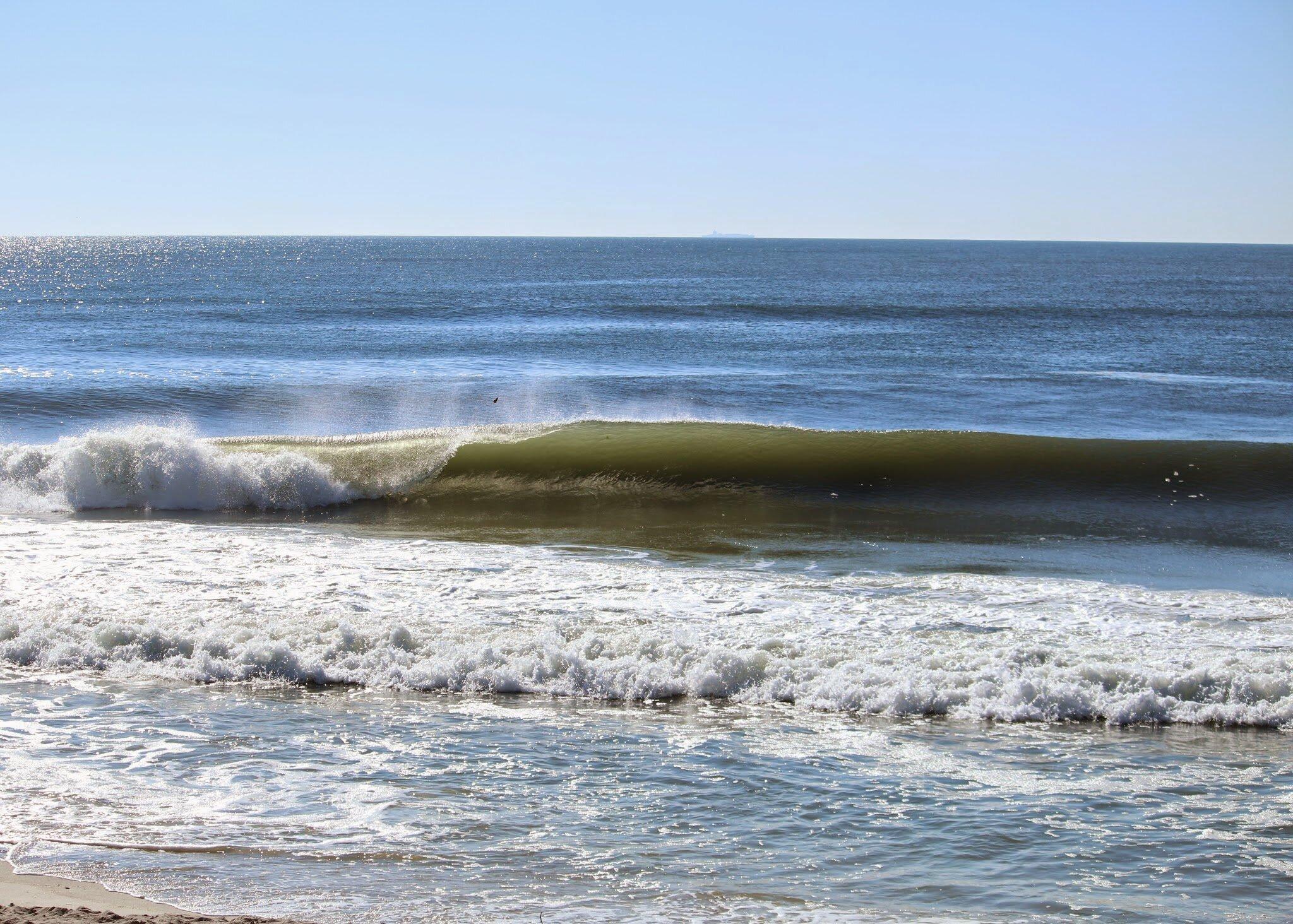 ocean wave with monarch.jpg