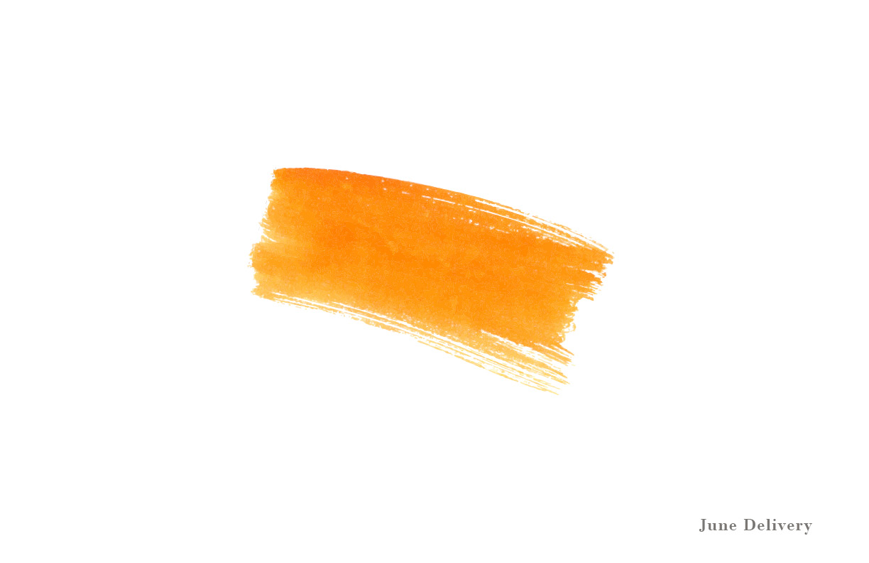 ThreeJNYC_Lookbook_June18_single16.jpg
