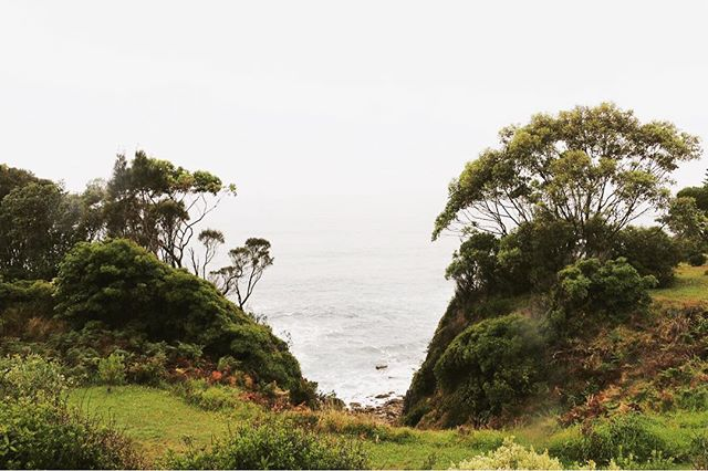 // the picturesque view from the Mossy Point project site. Feeling lucky to be working in a context that asks us to consider landscape as a key component of architecture. . . #architecture #australianarchitecture #oskarchitects #landscape #coastalarchitecture