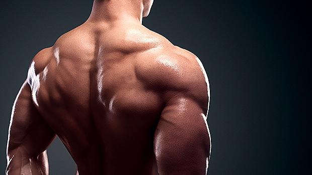 Back & Lat Exercises