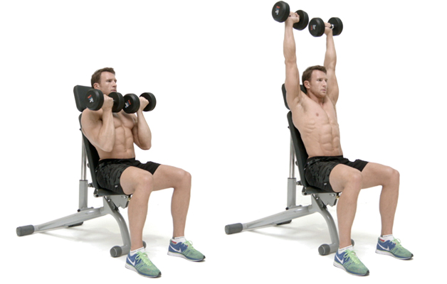 Make The Arnold Press Better — Advanced Human Performance Official ...