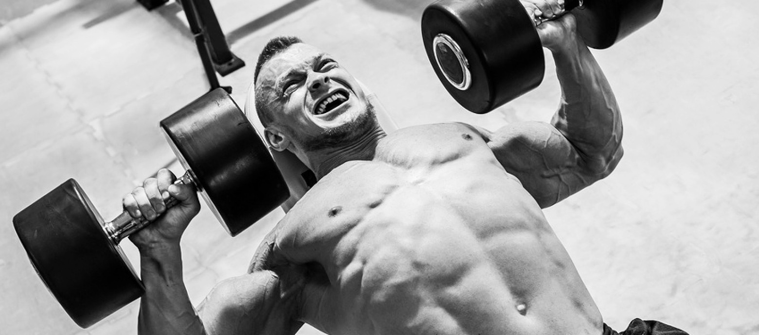Chest Press with Dumbbells 2.jpg