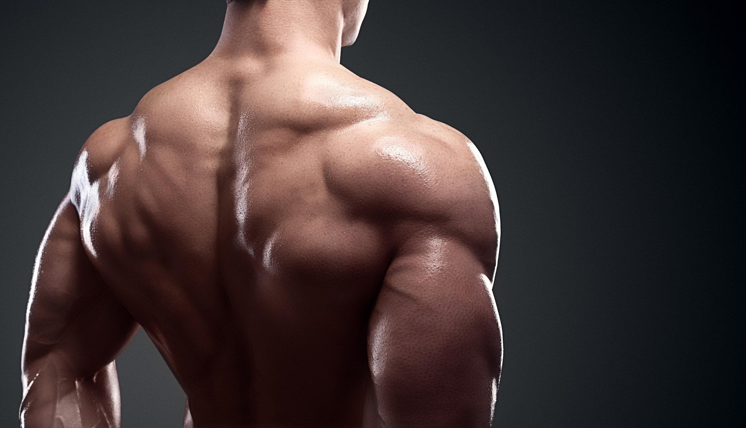 Back, Lat, and Shoulder Stance.jpg