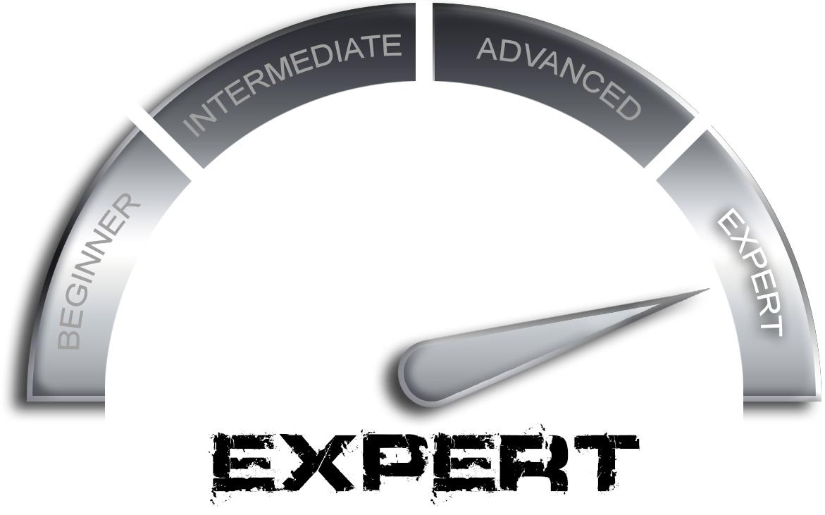Expert 3.jpg