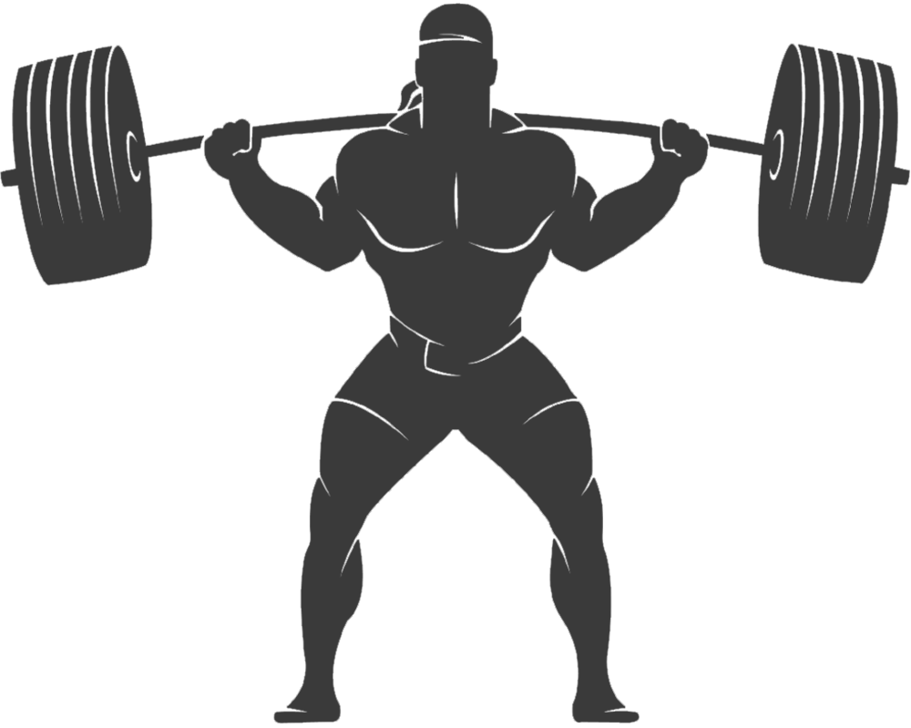Hypertrophy - Muscle Mass.png