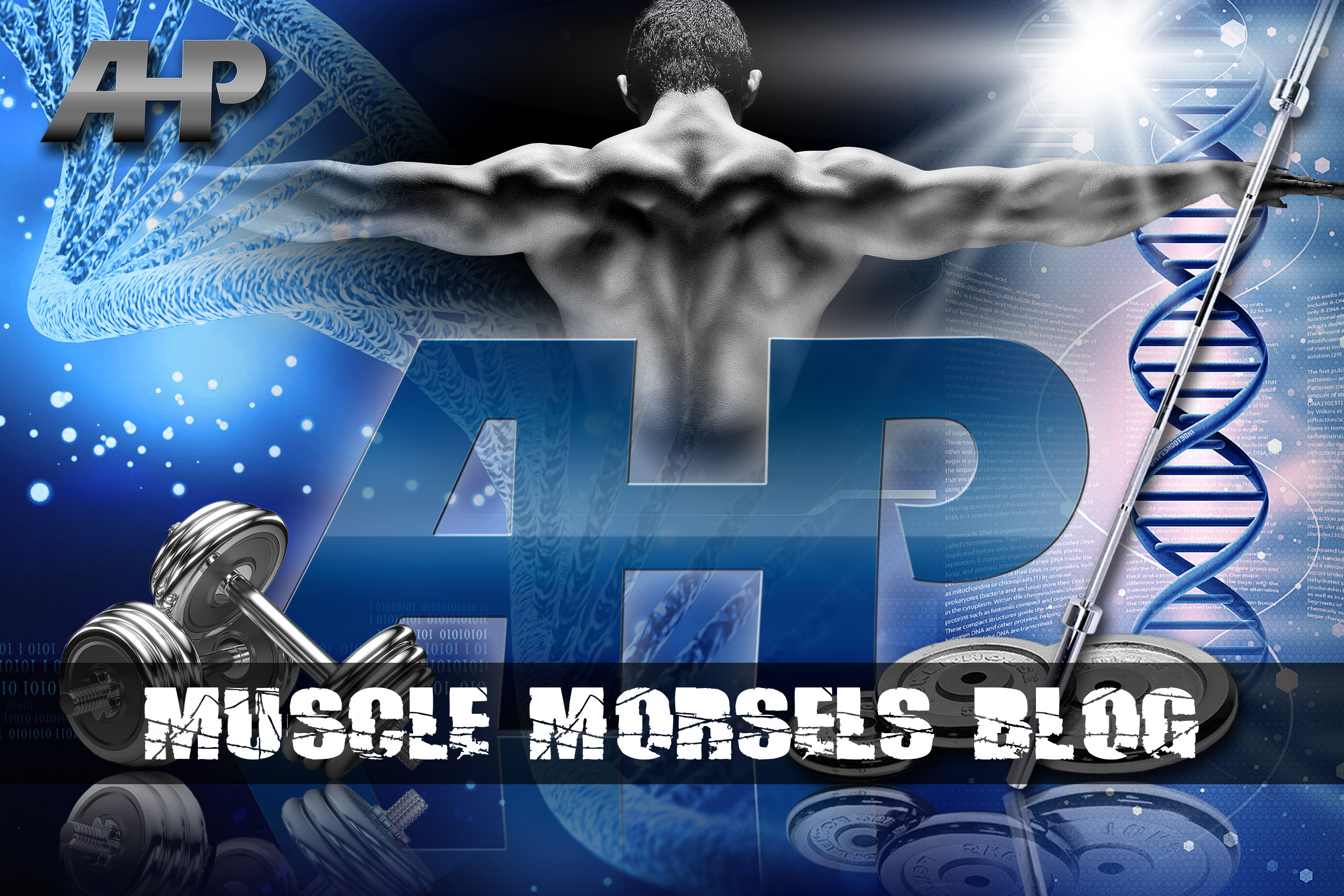 Muscle Morsels Blog (AHP).jpg
