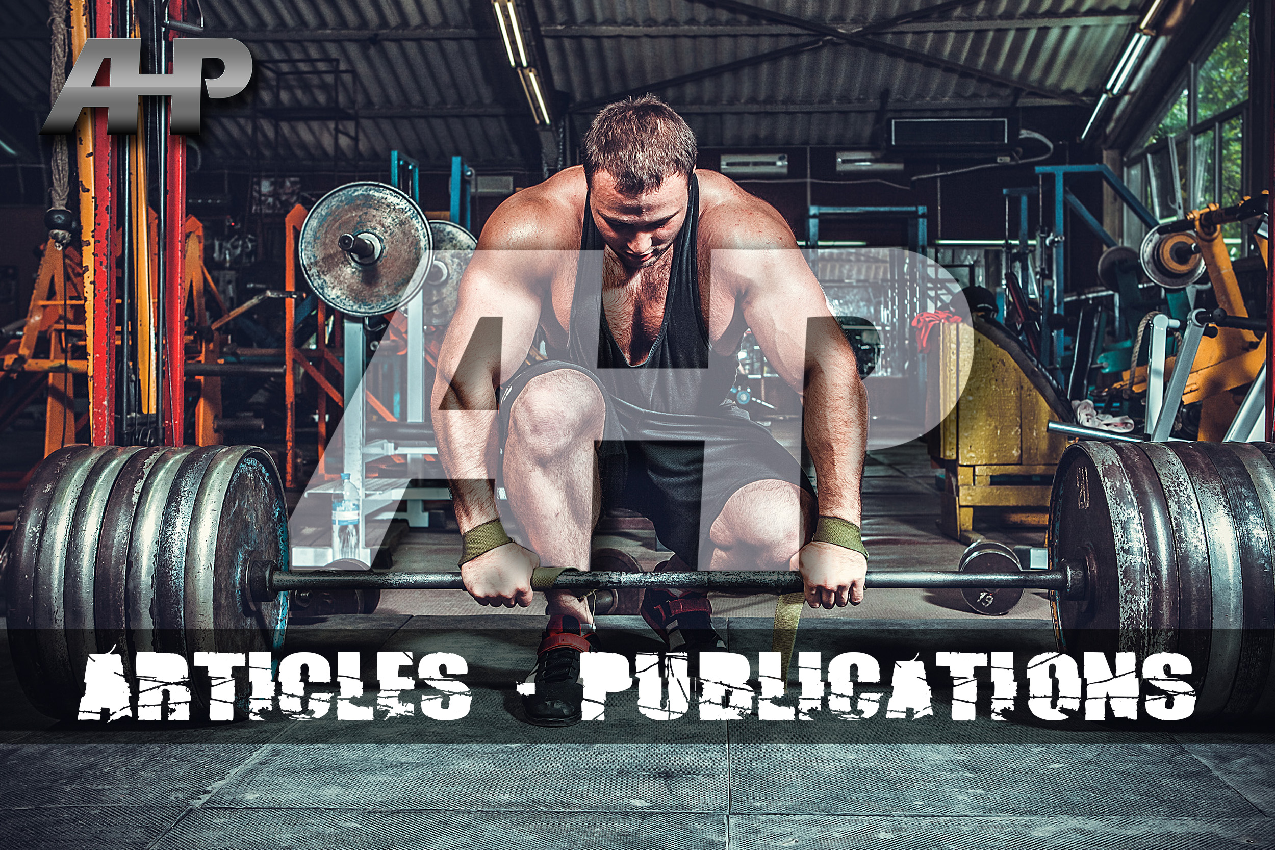 Articles & Publications - AHP.jpg