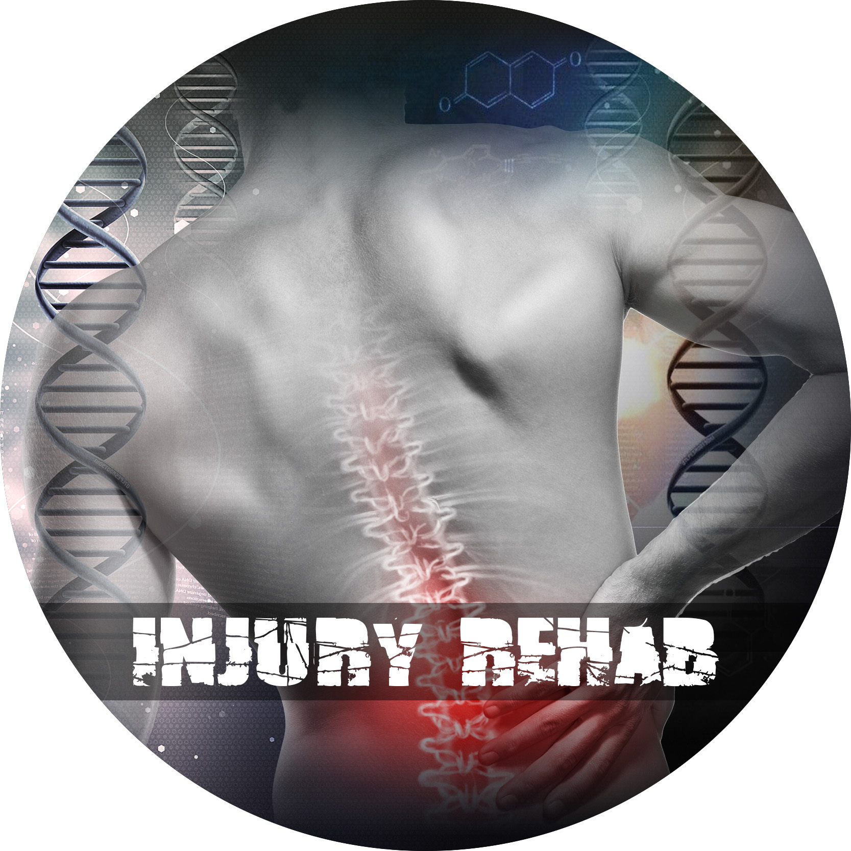 Injury Rehabilitation Circle - AHP (Title).jpg