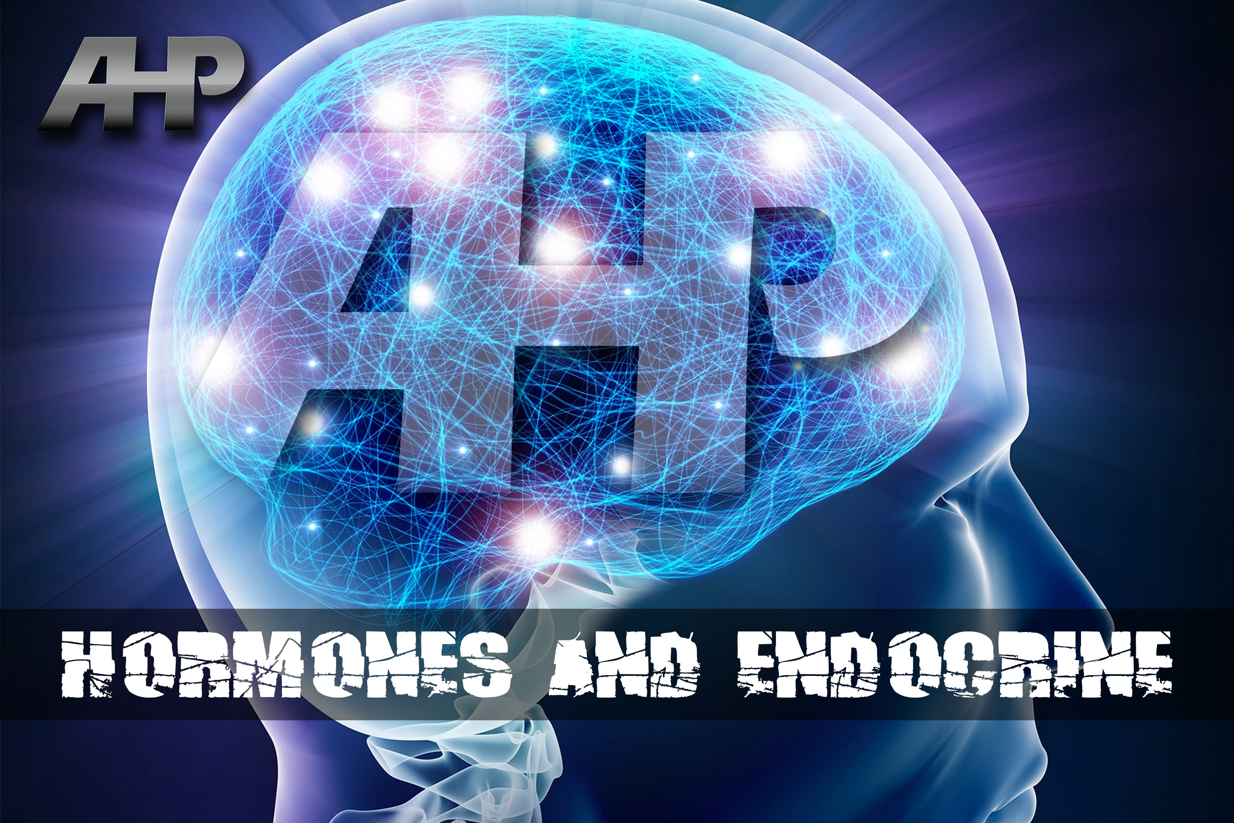 Hormones and Endocrine Transformation Thumbnail (AHP).jpg