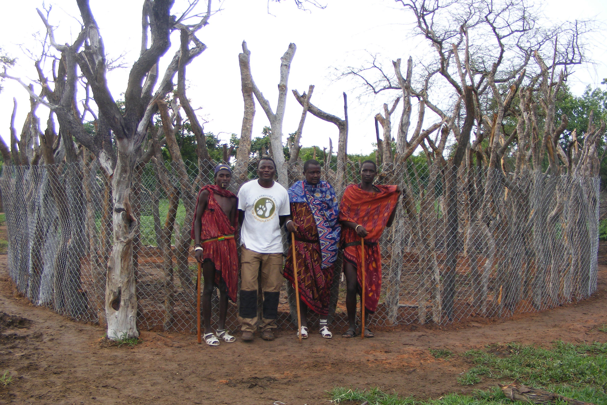 Improved boma to protect livestock from lion attacks. PC: Jon Erickson