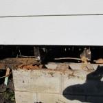 rotten-wood-009-150x150.jpg