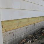 rotten-wood-018-150x150.jpg