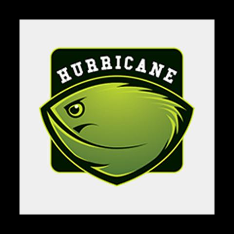 hurricane_1-2.png
