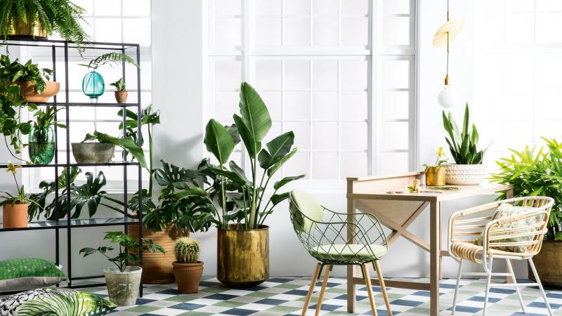 http://www.goodtaste.co.za  Lushly planted interior