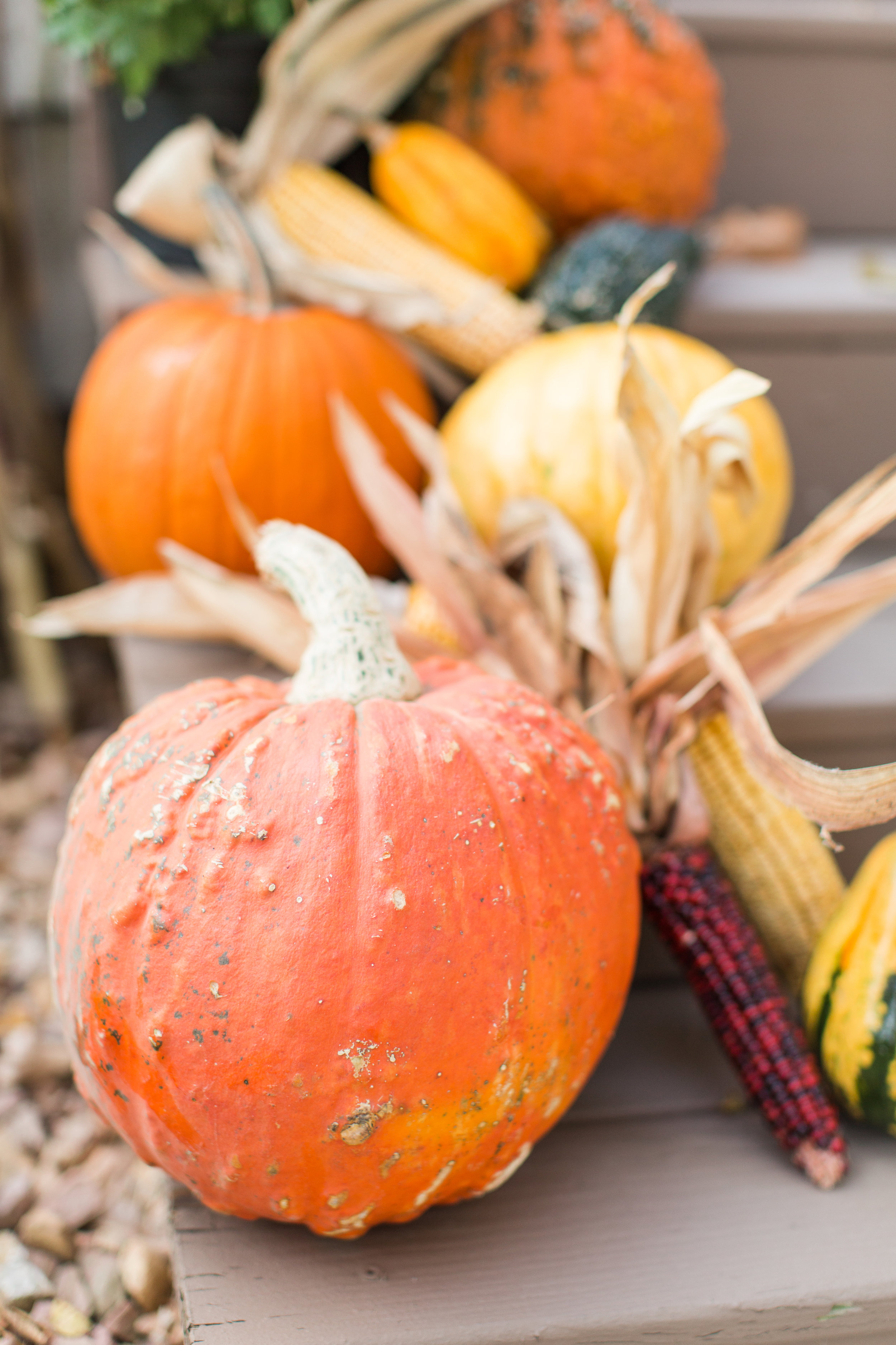 fall decor | stephanie lynn photography | front porch | fall decorating