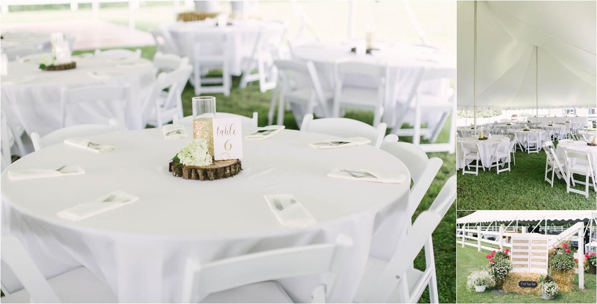 Stephanie Lynn Photography- Strilaeff Wedding, countryside wedding- Glenville, MN_0029.jpg