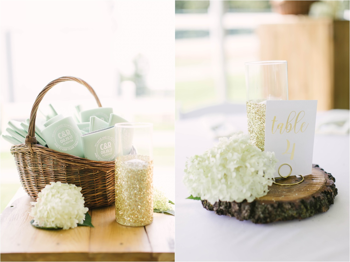 Stephanie Lynn Photography- Strilaeff Wedding, countryside wedding- Glenville, MN_0028.jpg