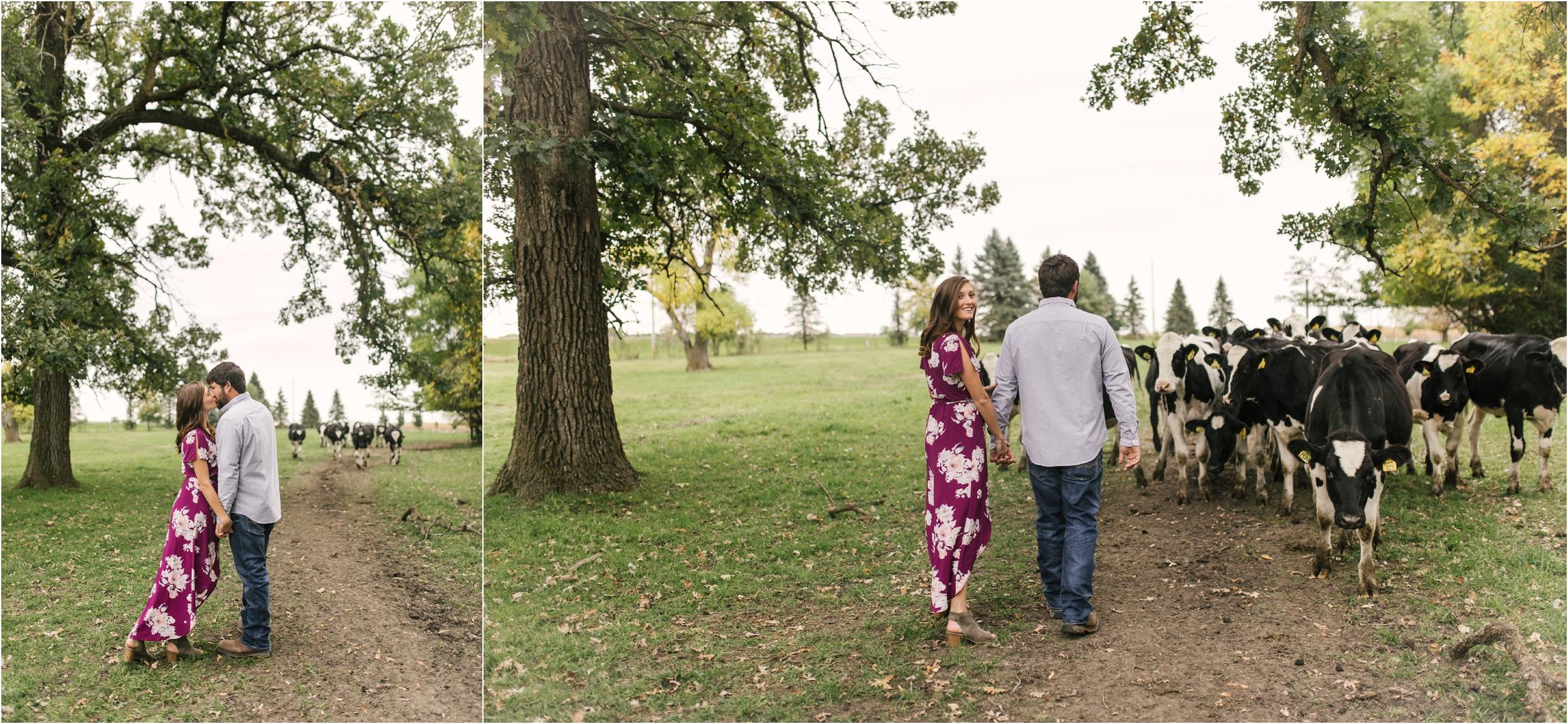Countryside Engagement Photos_ Minnesota Wedding Photographer_Stephanie Lynn Photography_0058.jpg