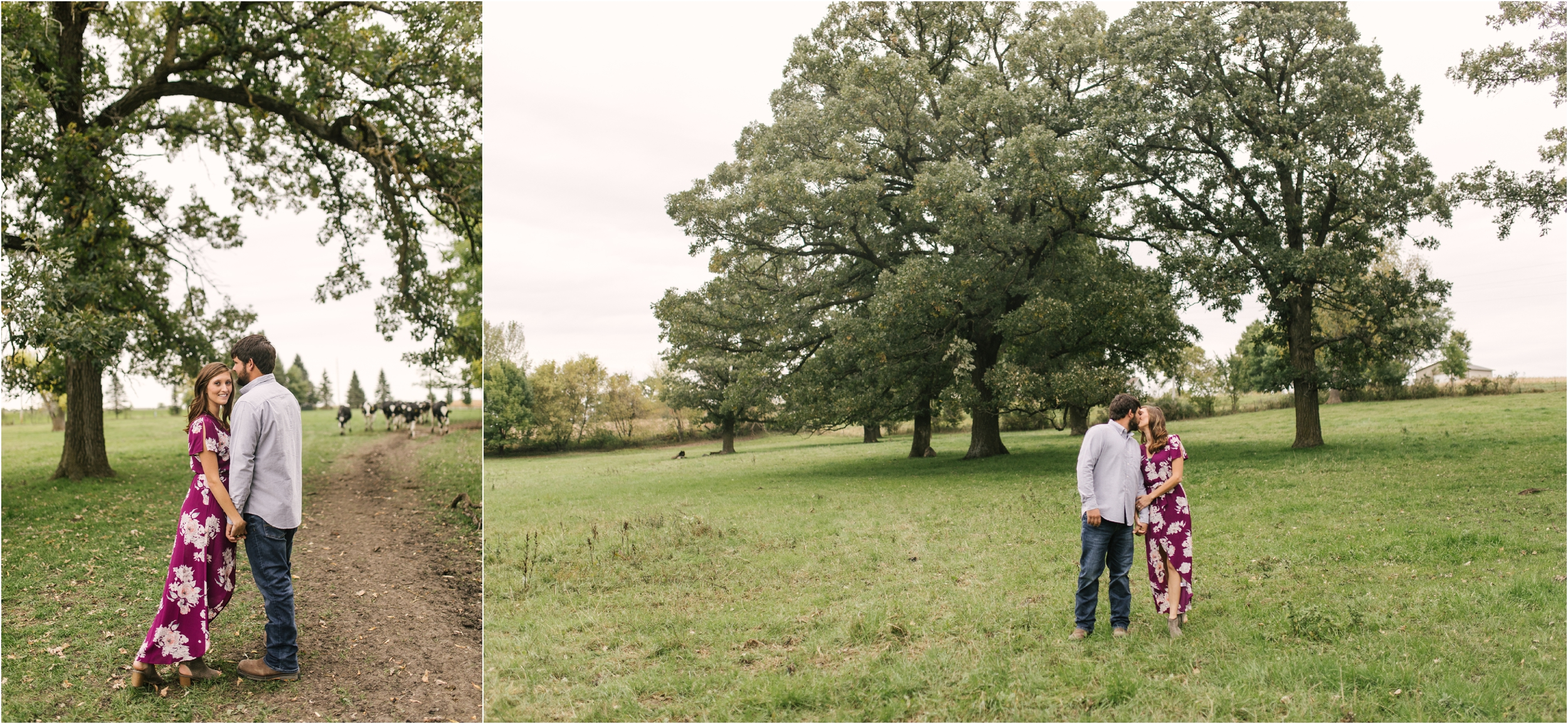 Countryside Engagement Photos_ Minnesota Wedding Photographer_Stephanie Lynn Photography_0059.jpg