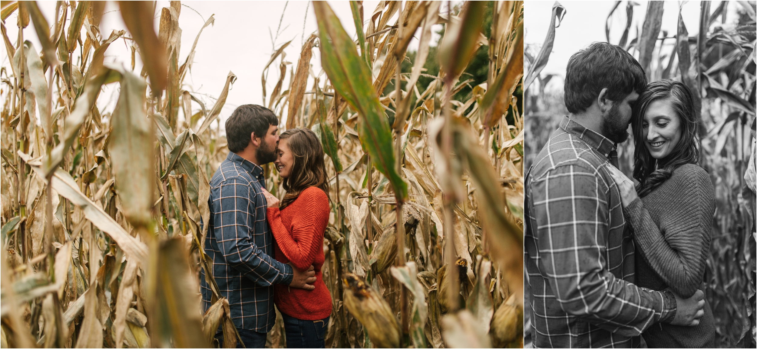 Countryside Engagement Photos_ Minnesota Wedding Photographer_Stephanie Lynn Photography_0063.jpg