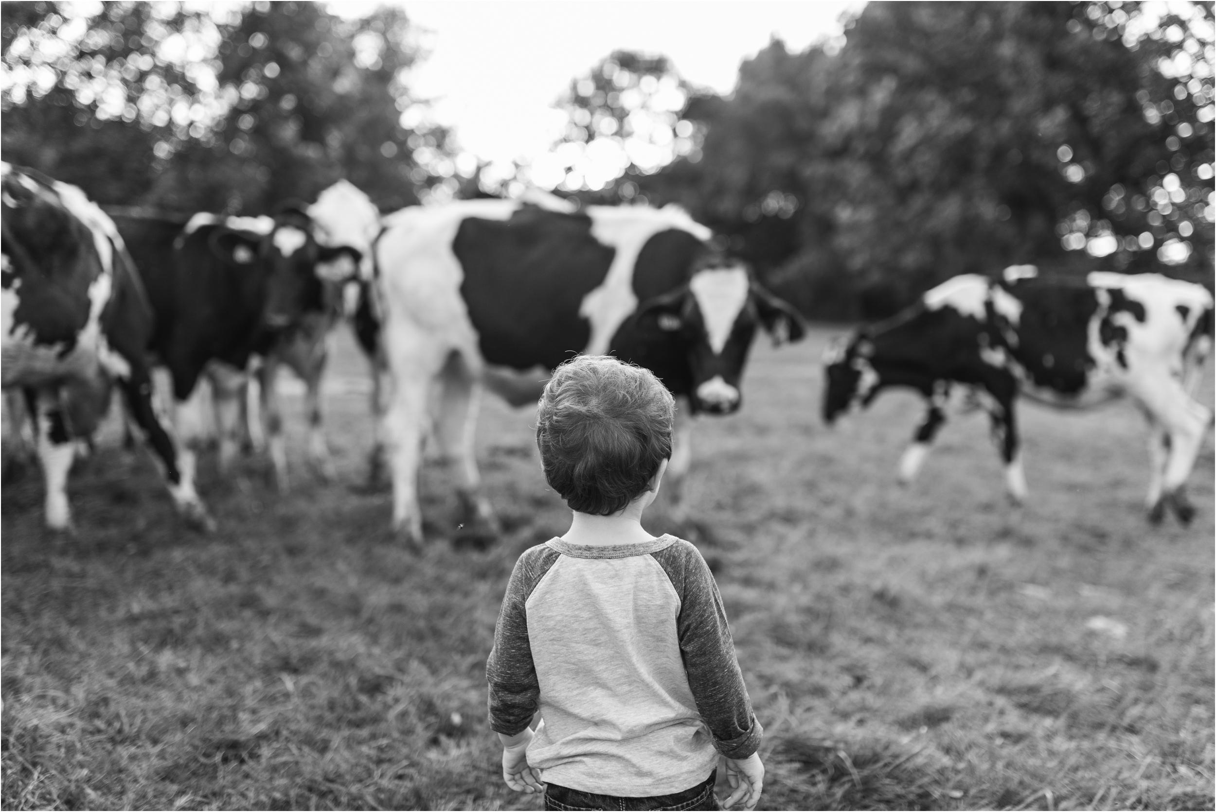 Farm Family Session_Midwest Wedding Photographer_Stephanie Lynn Photography_0087.jpg
