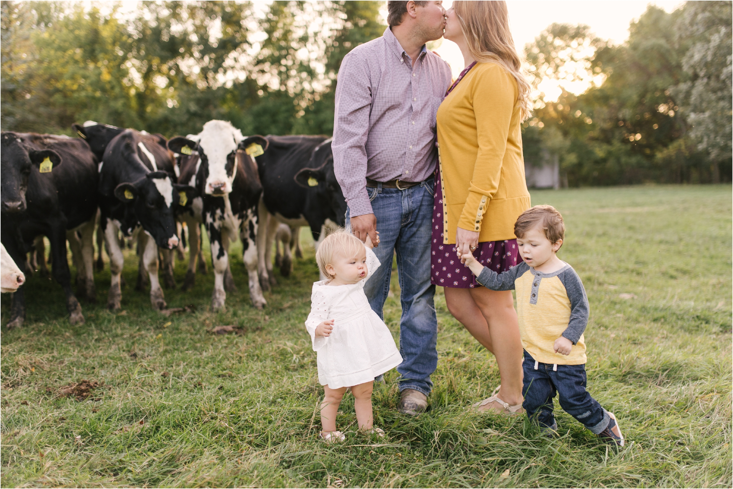 Farm Family Session_Midwest Wedding Photographer_Stephanie Lynn Photography_0084.jpg