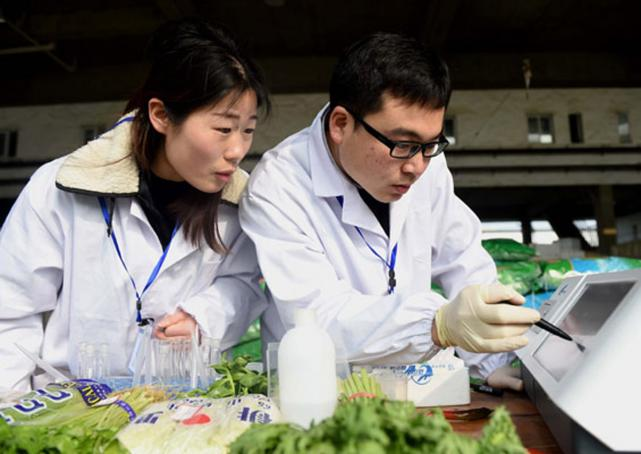 Inspectors check for pesticide residue in vegetables in Hefei, Anhui province, early this month.  Photo: China Daily/Asia News Network