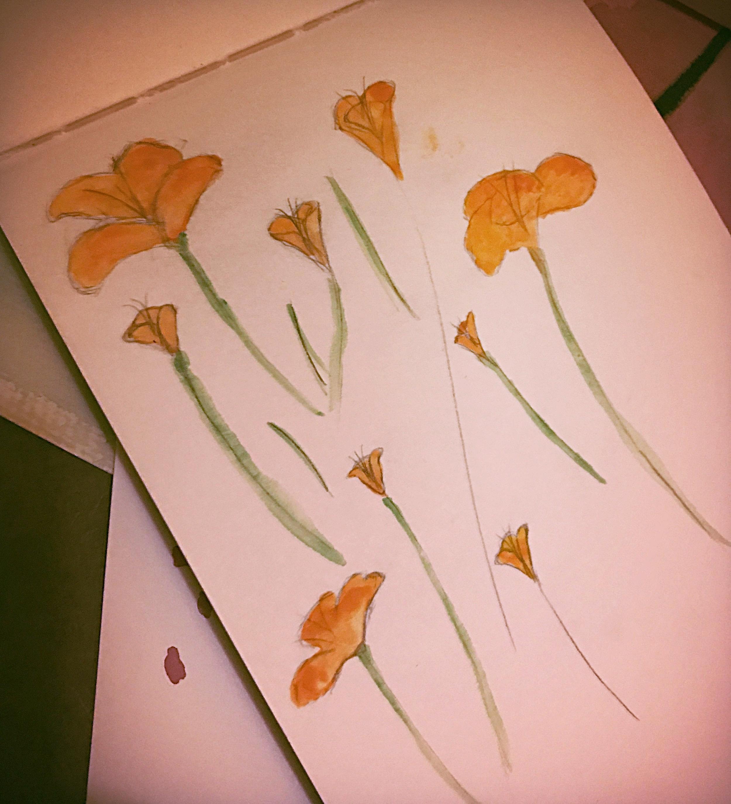 Orange Bell Flowers