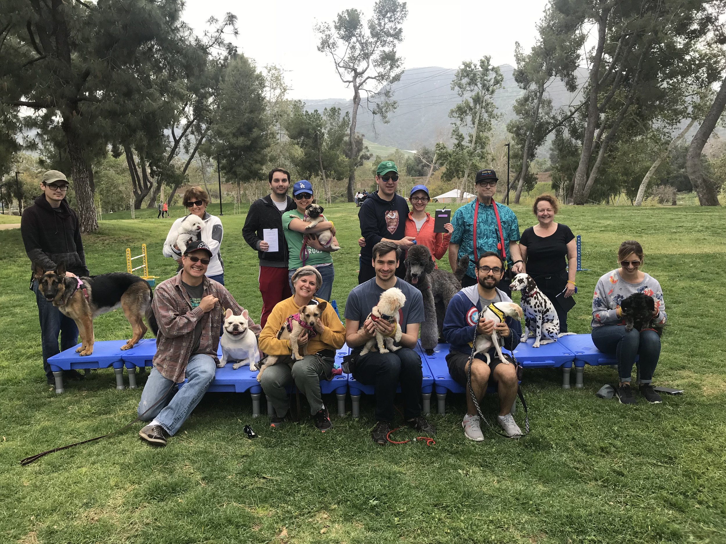 Highly sought after Obedience Classes include Obedience, on-leash socialization as well as minor agility. You receive a set of 7 lessons for the competitive price $175!