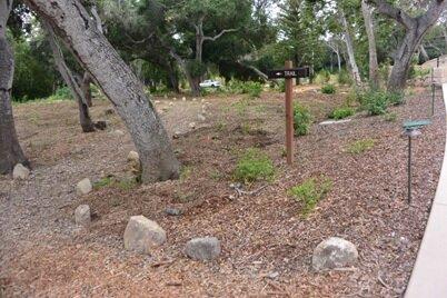 Casa Dorinda trail and new native plantings