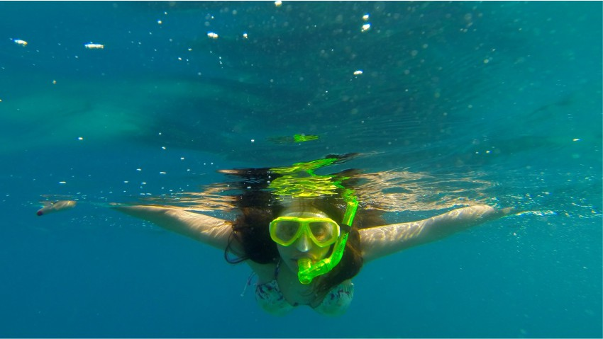 Snorkling trips from 293 on Komba