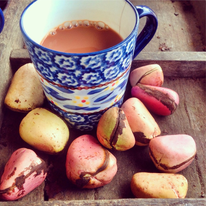Tea and nuts served at 293 on Komba