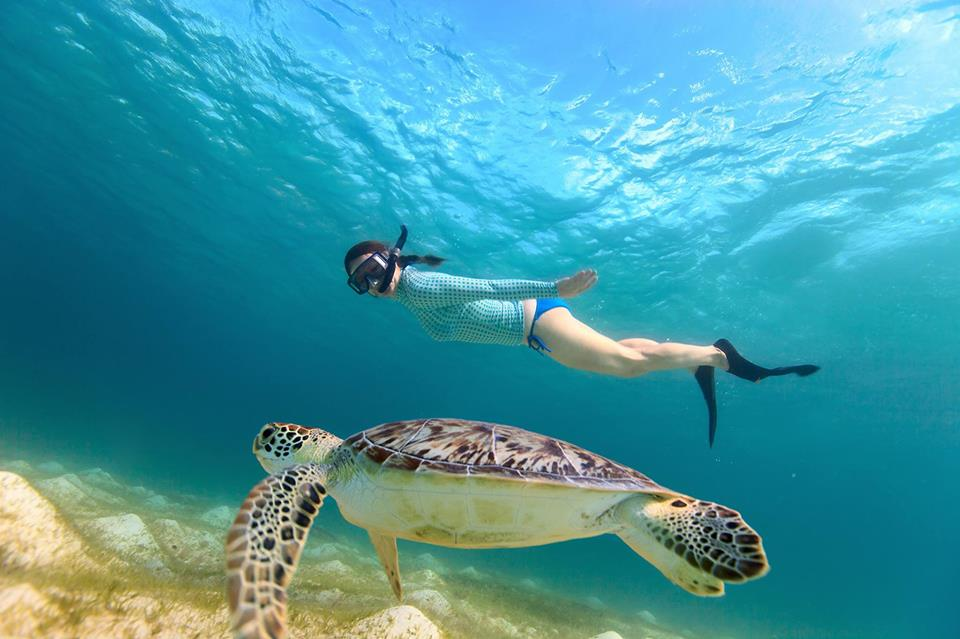 Woman snorkel Diving with a Turtle in Nosy Be, Madagascar