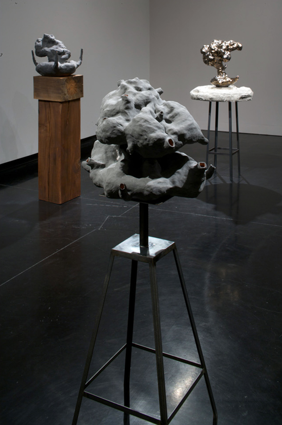 Installation view,  Blow by Blow  ,  solo exhibition at the Tang Museum, Skidmore College, NY, 2009.