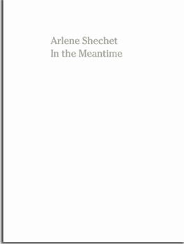 In the Meantime  Published on the occasion of the exhibition, ARLENE SHECHET, In the Meantime, April 27 – May 27, 2017 at Corbett vs Demspey, Chicago.